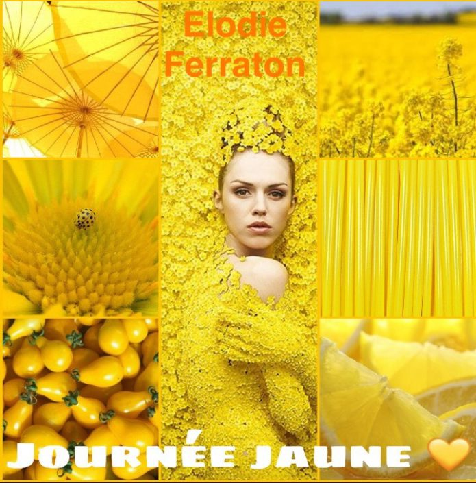 la-journee-jaune-2017-elodie ferraton 02